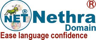 Nethra Domain logo